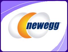 NewEgg Ecommerce Consulting
